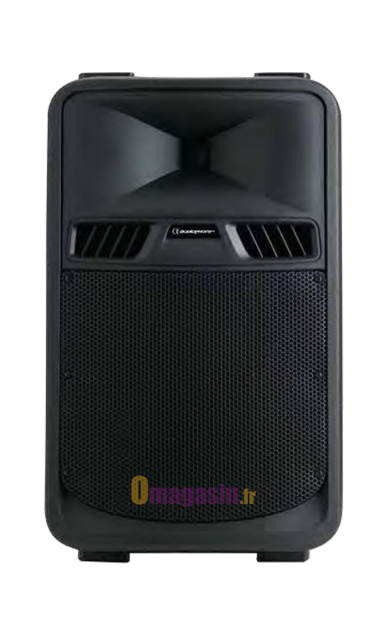Audiophony-SR10A (LA PAIRE)